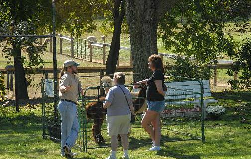 Bent Pine Alpaca Farm